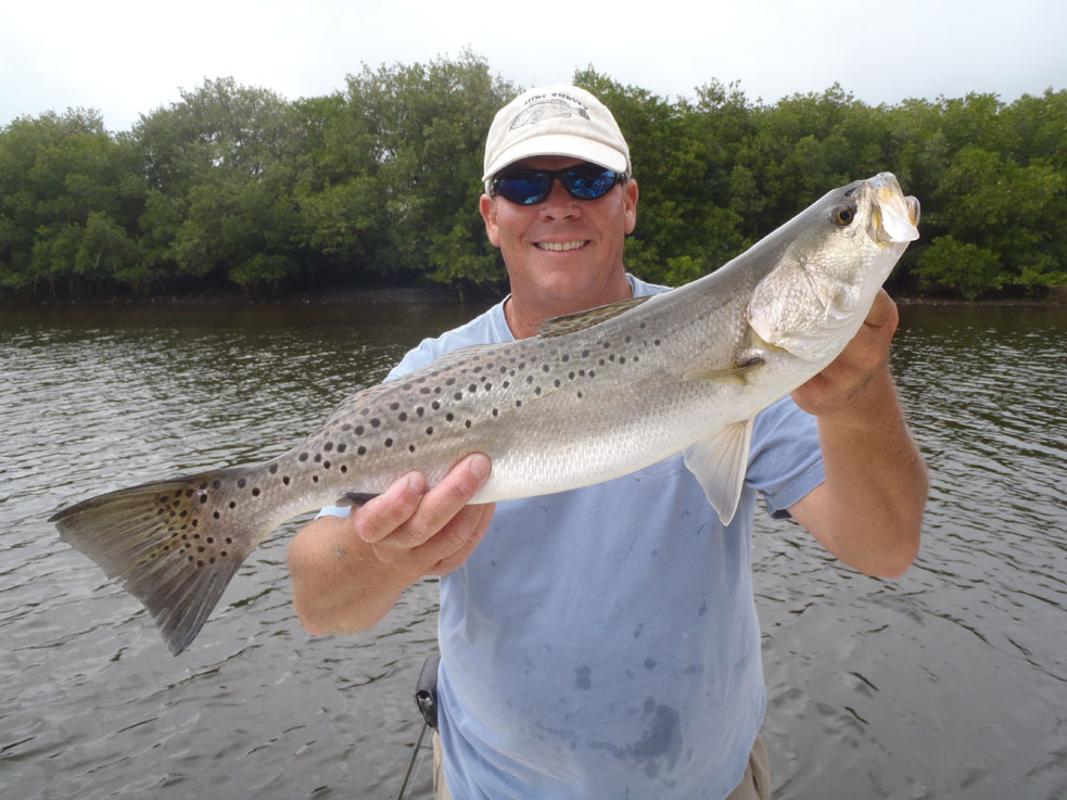 big trout caught in Tampa bay